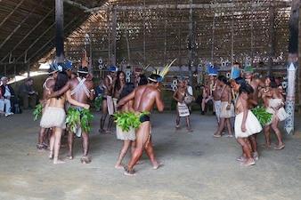Amazon rio brazil negro indians rainforest