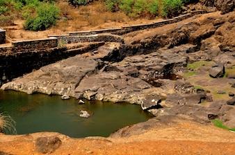Ancient Pond