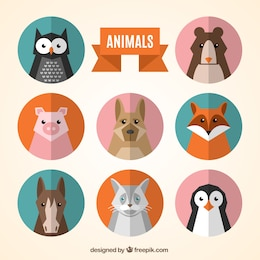 Animal avatars collection