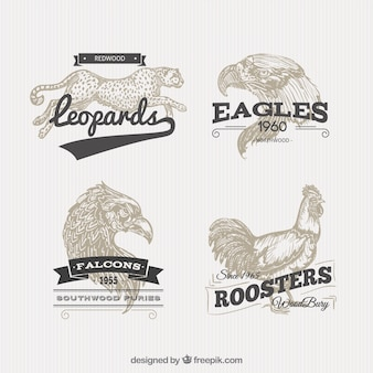 Animal badges in retro style