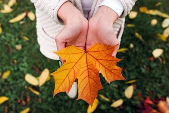 Anonymous woman showing orange maple leaf