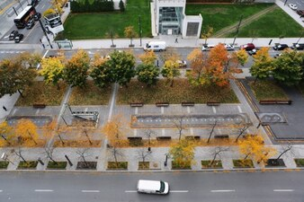 Autumn in the street