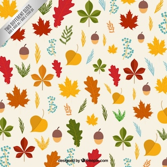 Autumn leaves and hazlenuts background