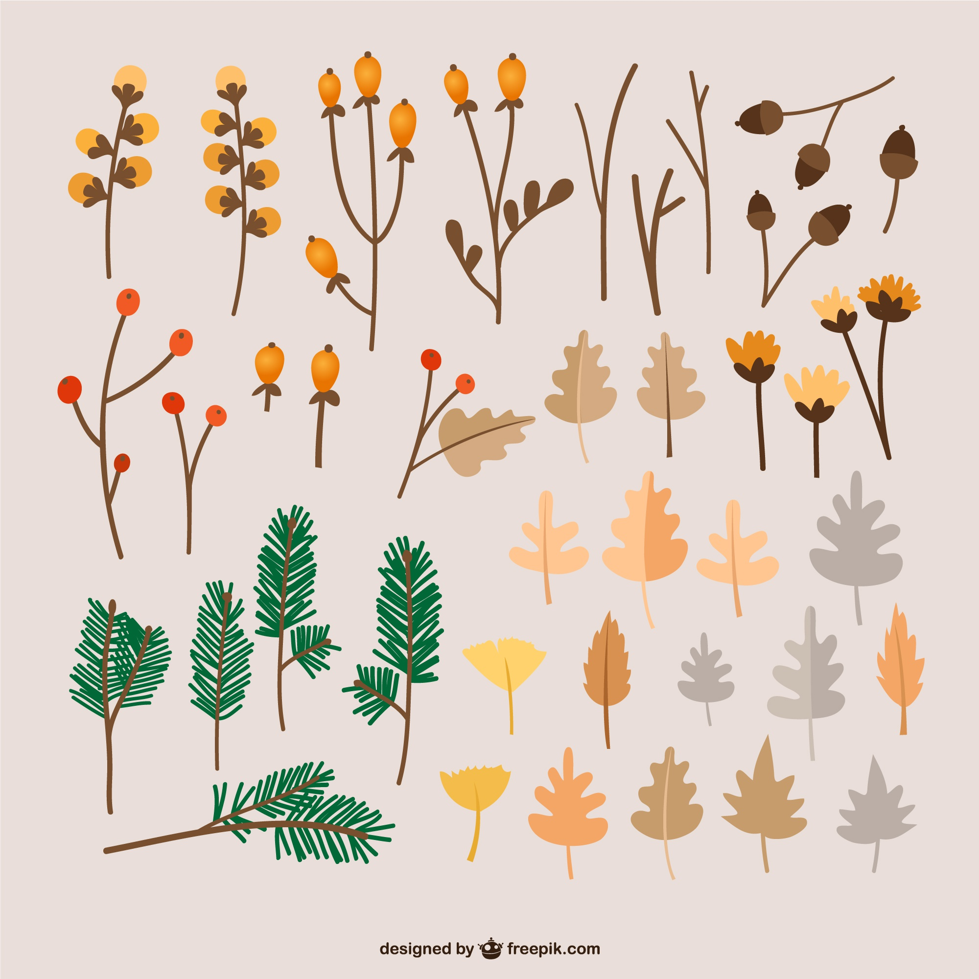 Autumn leaves illustrations
