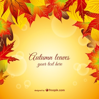 autumn leaves vector graphic