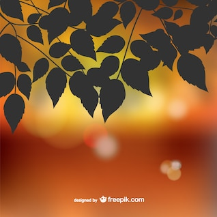 Autumn silhouette leaves bokeh background