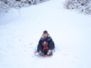 Back Yard Sledding, sledding