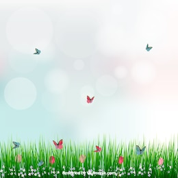 Background with grass and butterflies