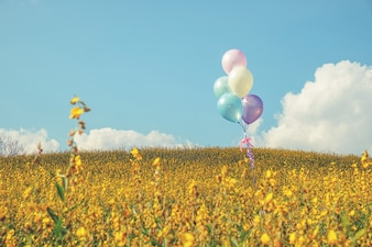 Balloon with colorful on blue sky concept of love in summer