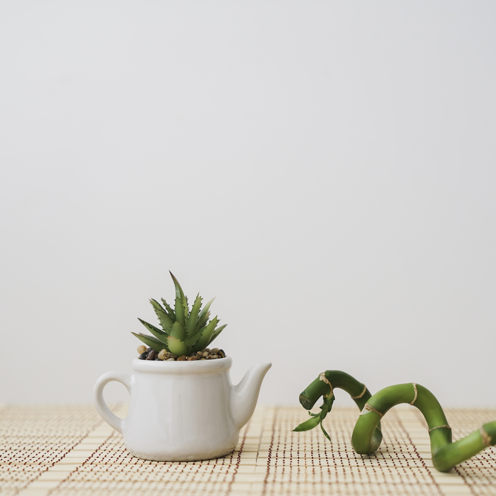 Bamboo next to a teapot with plant