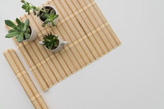 Bamboo table runner with three plants