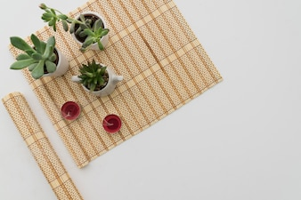 Bamboo table runner with tree plants and candles