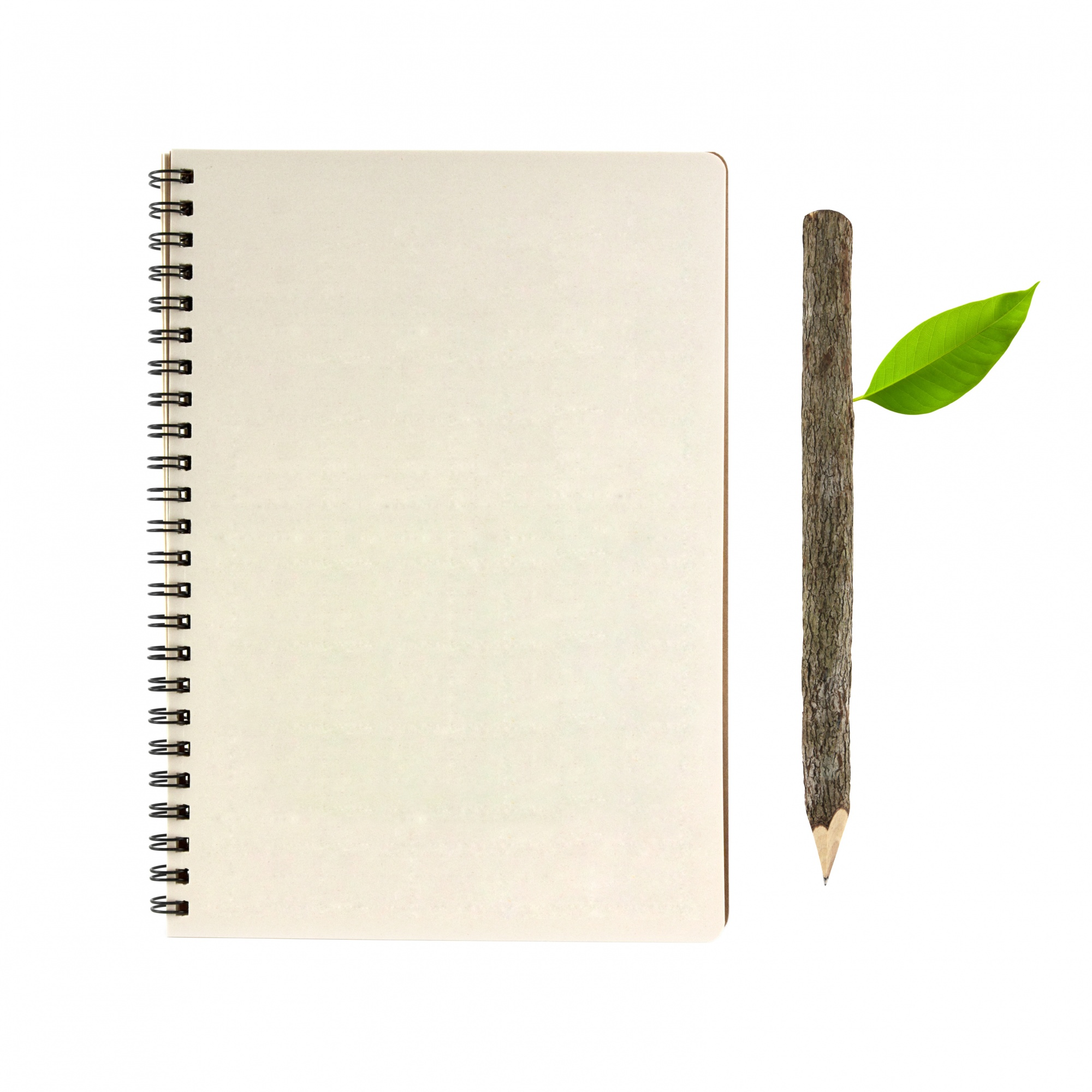 Bark pencil wooden reminder notebook plain