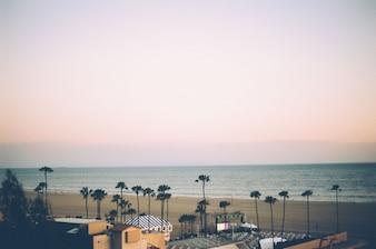 Beach at sunset scene