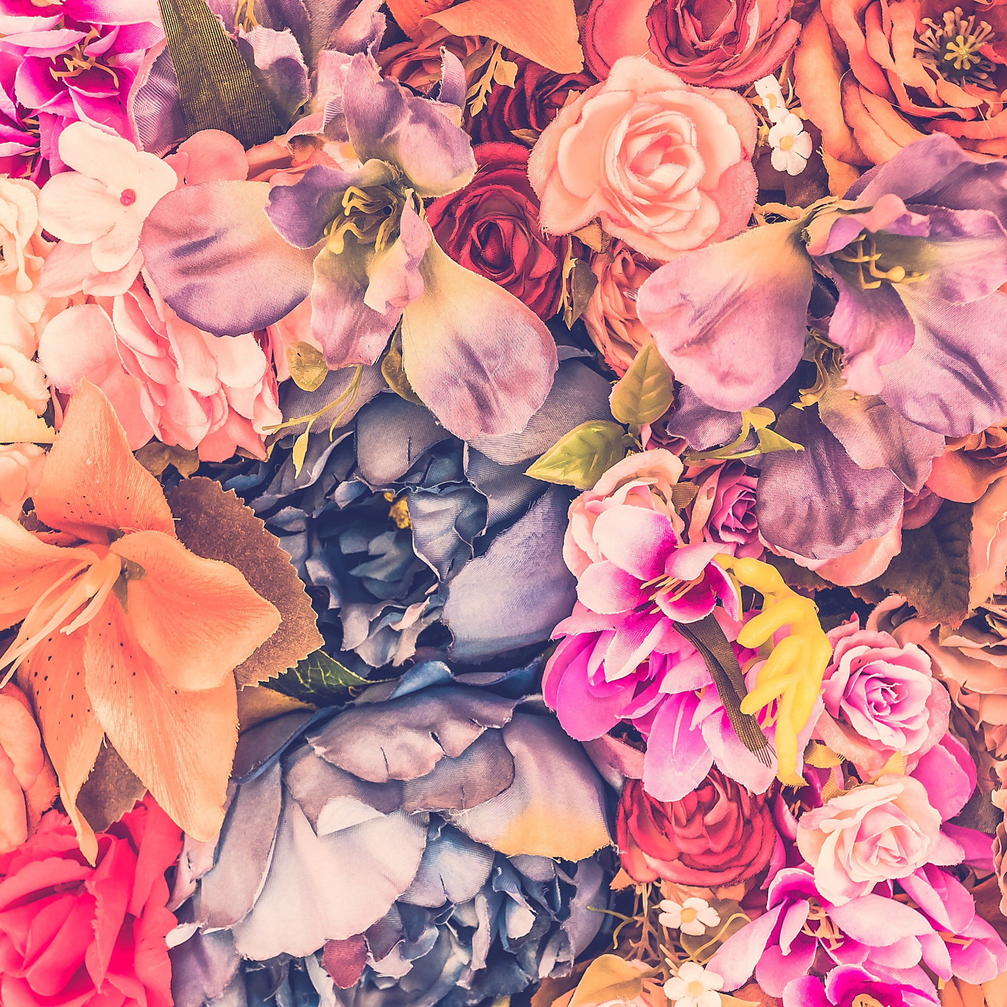 Beautiful background with different flowers