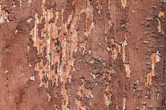 古い割れた赤色の美しいひび割れた木のテクスチャ水平のコピースペース。