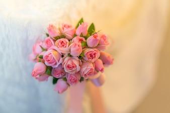 Beautiful flowers spring floral blooming