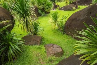 Beautiful green grass at the garden, Stone garden