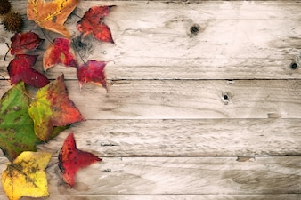 Beautiful maple leaves on vintage wooden background, border design. vintage color tone - concept of autumn leaves in fall season background