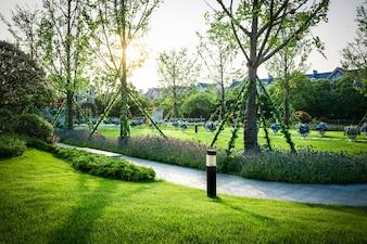 Beautiful panorama of green city park at dawn
