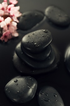 Beautiful pink Spa Flowers on Spa Hot Stones on Water Wet Background. Side Composition. Copy Space. Spa Concept. Dark Background.