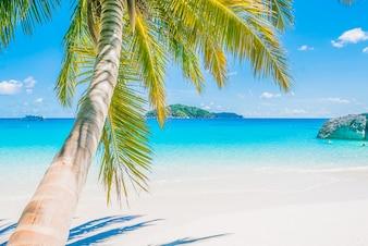 Beautiful travel beach sky sand