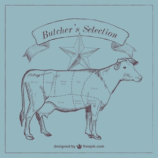 Beef cut diagram