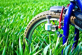 Bicycle on a green field