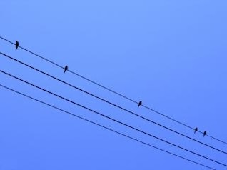 Birds on a Wire, wire