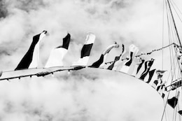Black and white flags