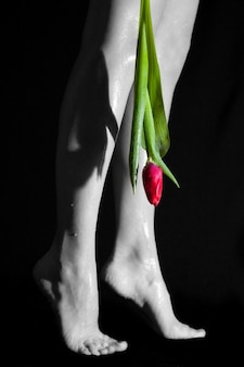 Black and white legs and a colored flower