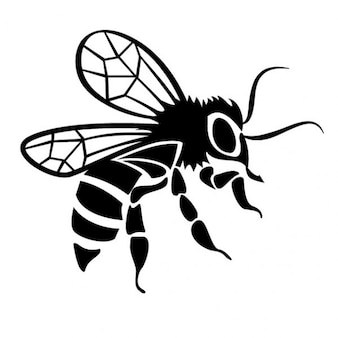 Black bee drawing vector image