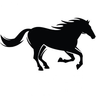Black horse silhoutte graphic