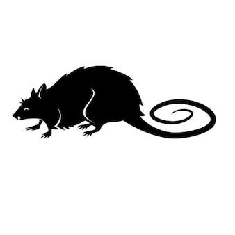 Black rat vector illustration