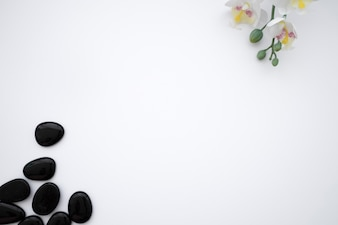 Black stones and flower