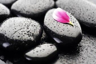 Черные камни мокрые и розовые