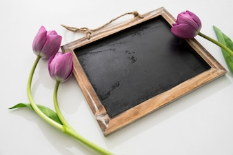 Blackboard and roses