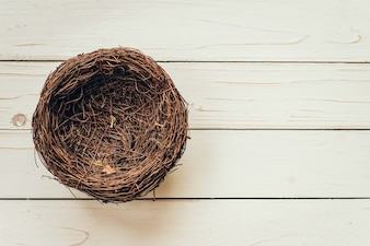 Пустое гнездо на фоне дерева с пространством