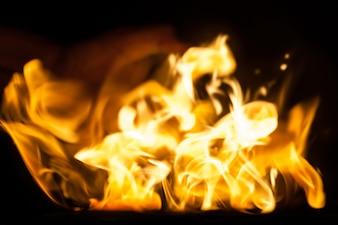 黒い地面に隔離された火の炎