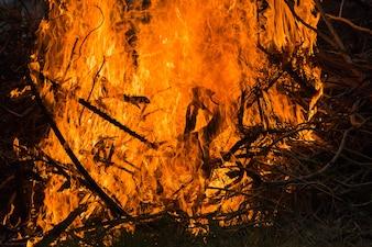 Blazing fire flame