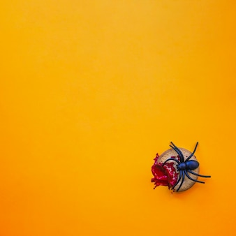 Bloody cookie and spider