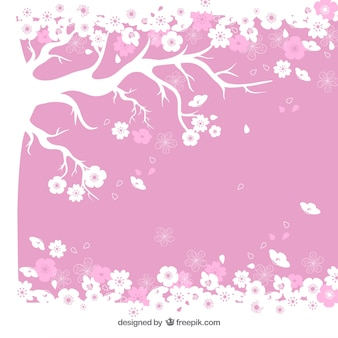 Blooming cherry tree background
