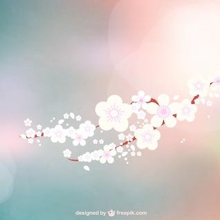 Blooming flowers bokeh background