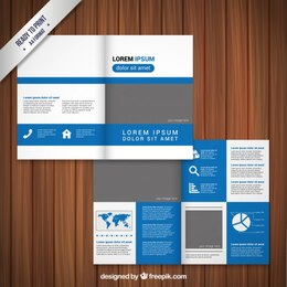 Blue and grey brochure design