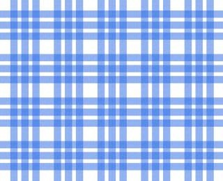 blue and white tablecloth pattern