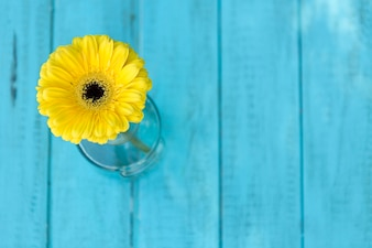 Blue boards with yellow daisy
