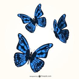 Blue butterflies vector set