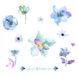 Blue watercolor flowers illustrations