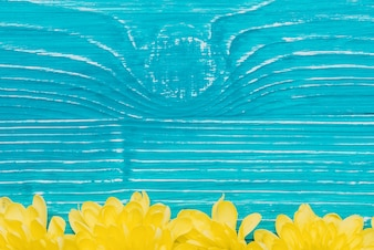 Blue wooden background with yellow petals