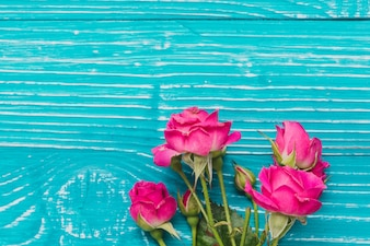 Blue wooden surface with beautiful roses